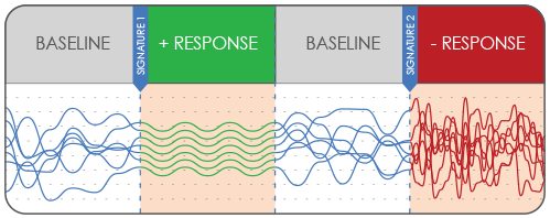 Dynamic baseline and response